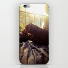 Sitting by the Evening Sun iPhone & iPod Skin