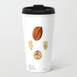 Akee (Blighia sapida) Travel Mug