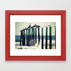 Pelicans on Pilings Framed Art Print
