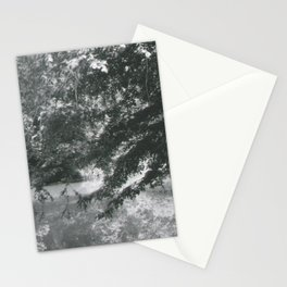 Trees Over Water Stationery Cards
