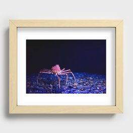 Giant crab Recessed Framed Print