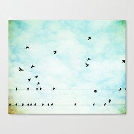 Birds Flying in Sky, Birds on Wires, Aqua Sky Nursery Art, Turquoise Pastel Nature Photo Canvas Print