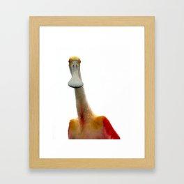 I Am Not A Duck Framed Art Print