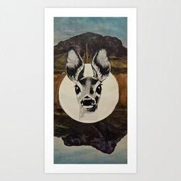 Desert Eyes Art Print
