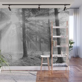 A light through the forest - Black and white - North Kessock, Highlands, Scotland Wall Mural