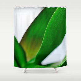 Orchid leaves Shower Curtain