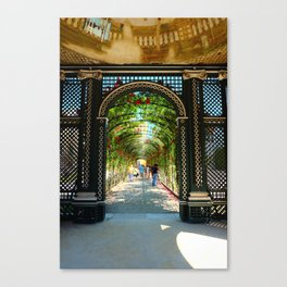 Walk among the roses Canvas Print