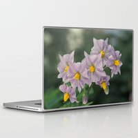 potato Laptop & iPad Skins featuring Potato Flowers by taiche