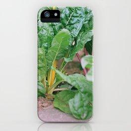 Rainbow Chard iPhone Case