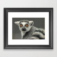 LEMUR PORTRAIT Framed Art Print