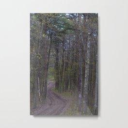 Winding Road in the Woods Metal Print