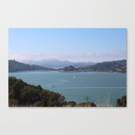Tiburon Canvas Print