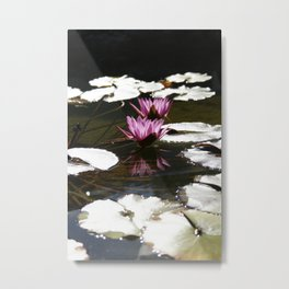 Lotus Portrait Reflection by Mandy Ramsey Metal Print