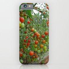 Hot 100 iPhone 6s Slim Case