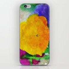 Color of Pansies Writ Large iPhone & iPod Skin