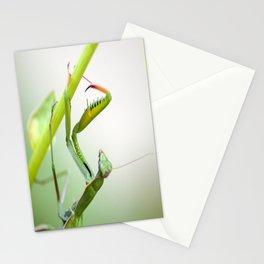 La Dame Verte Stationery Cards