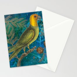 Carolina Parakeet with Cypress, Antique Natural History and Botanical Stationery Cards