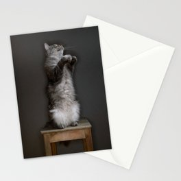 Cat standing Stationery Cards