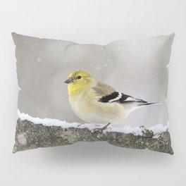 Winter Goldfinch Pillow Sham