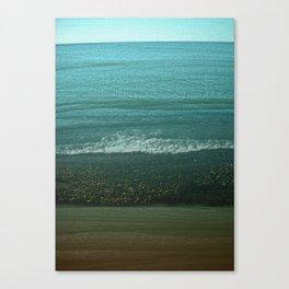 Seashore with Winter Lover Canvas Print