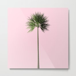 Palm, Pink, Relax Metal Print