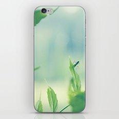 lil bug iPhone & iPod Skin