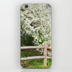 Crab Apple in bloom iPhone & iPod Skin
