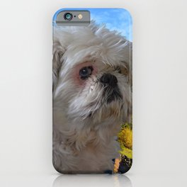 Denali - Loyal Lap-Dog iPhone Case