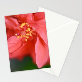 Red Hibiscus | Red Flower | Flower Macro Photography | Botanical Photography Stationery Cards