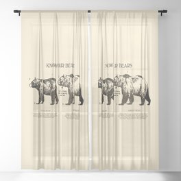 Know Your Bears Sheer Curtain