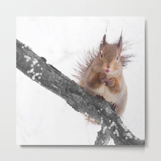 Little squirrel - smack! Metal Print