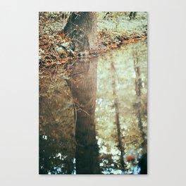 bois de vincennes (1) Canvas Print