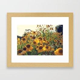 Yellow Bee Framed Art Print