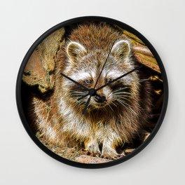Extraordinary Animals - Raccoon Wall Clock