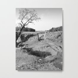 The Leaning Oak Metal Print
