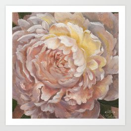 Peony in Oil by Victoria Nelson Art Print
