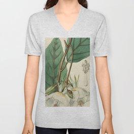 Edwards' Botanical Register Unisex V-Neck