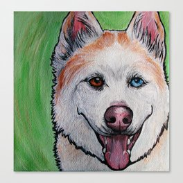 Red Siberian Husky Canvas Print
