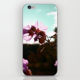 In the Sun iPhone Skin