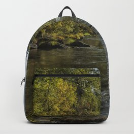 Vying for the Day Backpack
