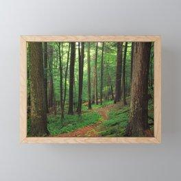 Forest 4 Framed Mini Art Print