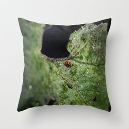 Beyond the void Throw Pillow