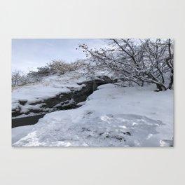 Homestead Crater Canvas Print