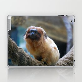 Monkey on Rope Laptop & iPad Skin