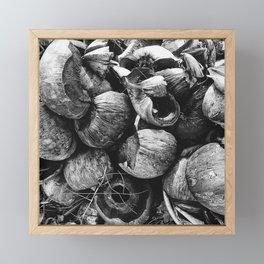 Coconut Shell Black and White Framed Mini Art Print