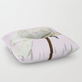 White Peony Pink Background Floor Pillow