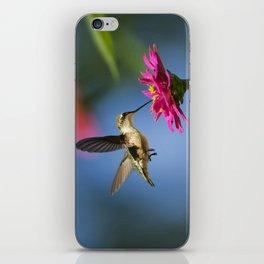 Hummingbird Flight iPhone Skin