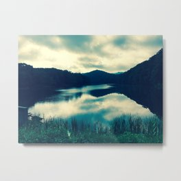 What Harmony Looks Like Metal Print