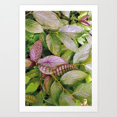 leaves evolved 2 Art Print