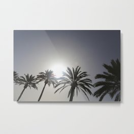 Majestic Palms Metal Print